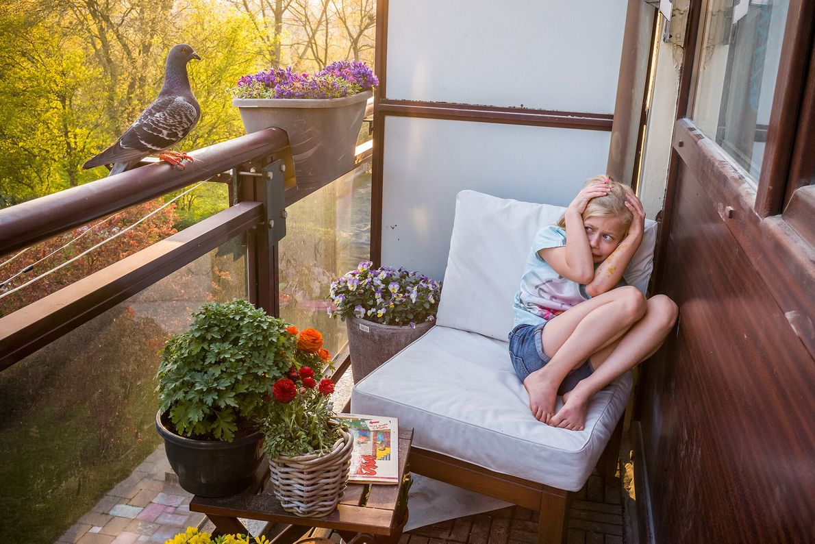 Merel Doest ducks for cover after Dollie, a pigeon, flew past her on her family's balcony ...