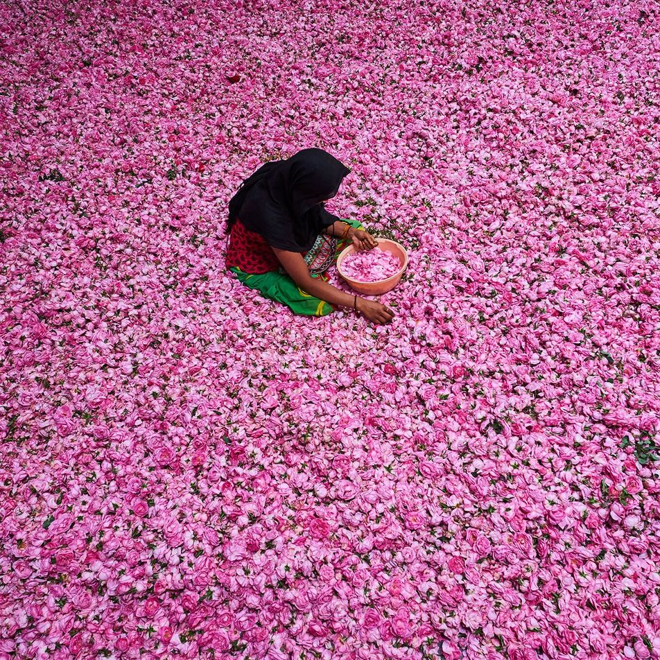 This ancient town is the perfume capital of India