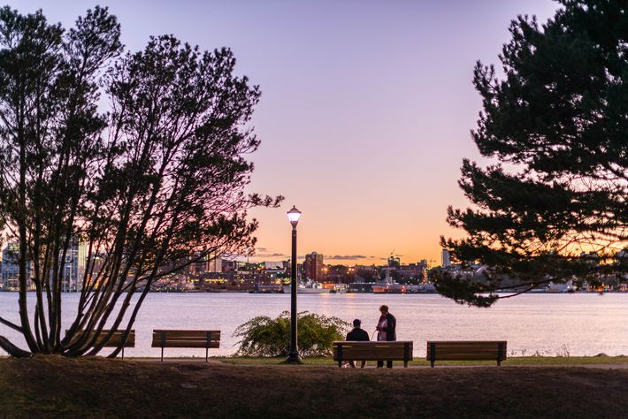 Benches line the sidewalks of Ferry Terminal Park, where visitors admire the glittering lights of Halifax.