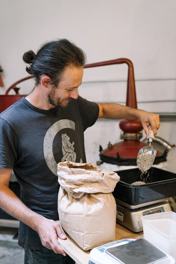 Guillaume Strebler at his Distillerie de la Plaine, weighing dried herbs to make his distillates for ...