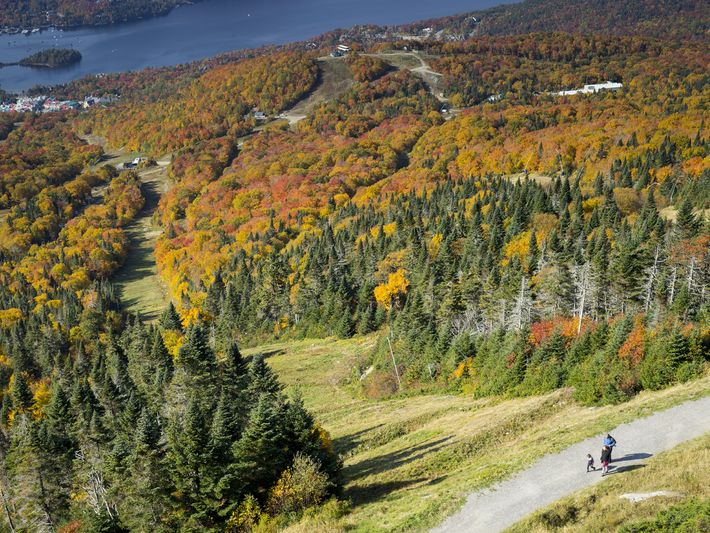 Hikers take advantage of one of Mont-Tremblant National Park's many trails.