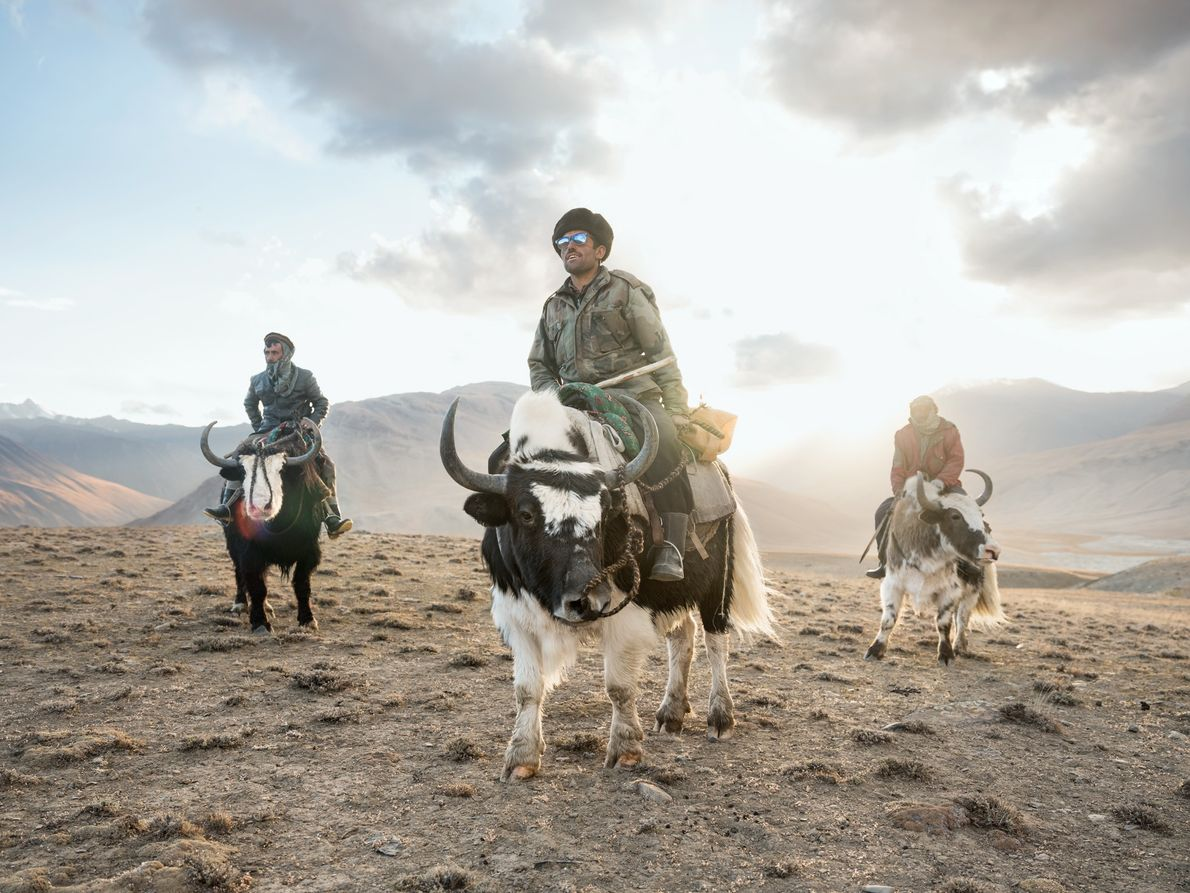In the Wakhan corridor, Sidol (left), Jumagul (centre), and Assan Khan (right) return on their yaks ...