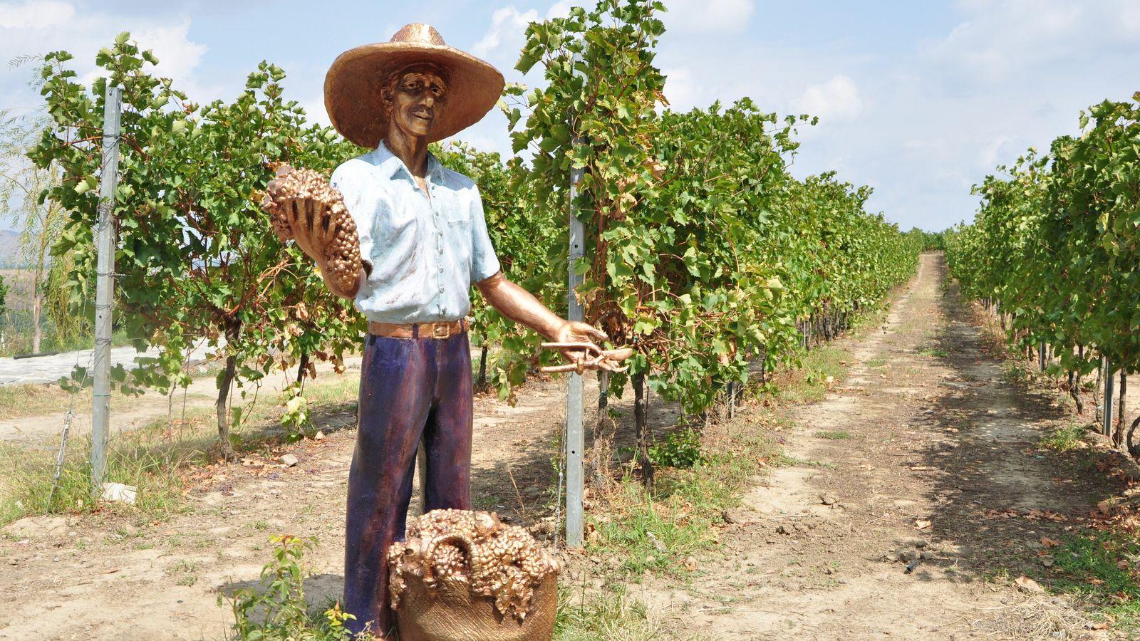 Savalan Aspi Winery is located in Gabala, northern Azerbaijan.