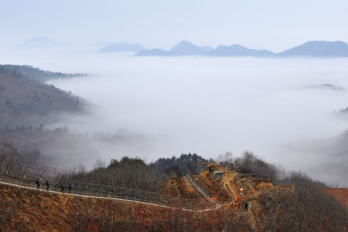 The demilitarized zone (DMZ) splits North Korea from South and is the most fortified border on earth.