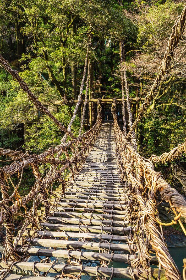 Kazurabashi Bridge, Iya Valley