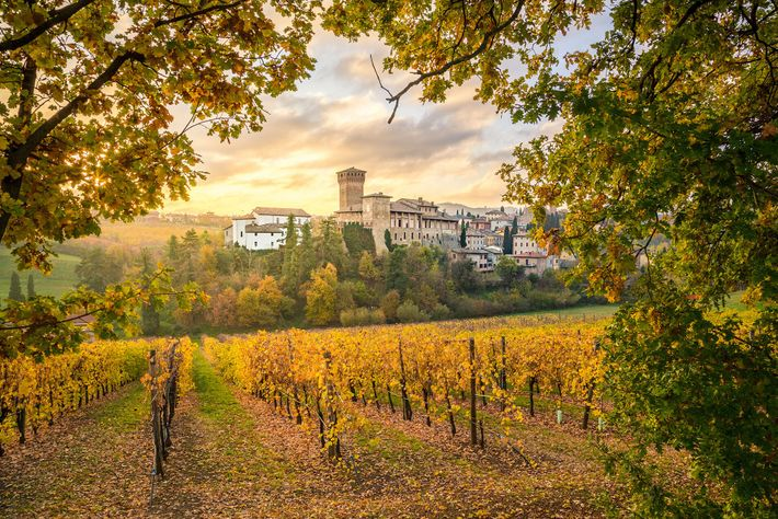 Extending from the Apennine Mountains to the Po River in the north, the region of Emilia-Romagna ...