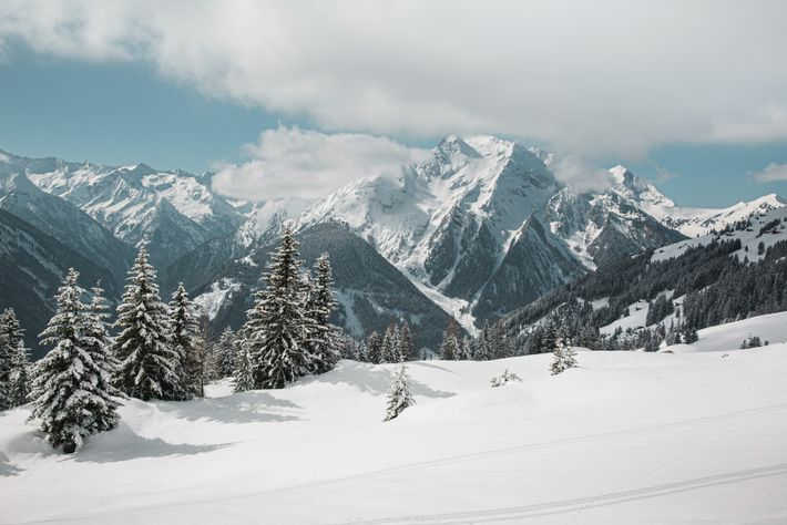 The Zillertal Valley is divided into four main ski areas, each with its own unique characteristics and charm.