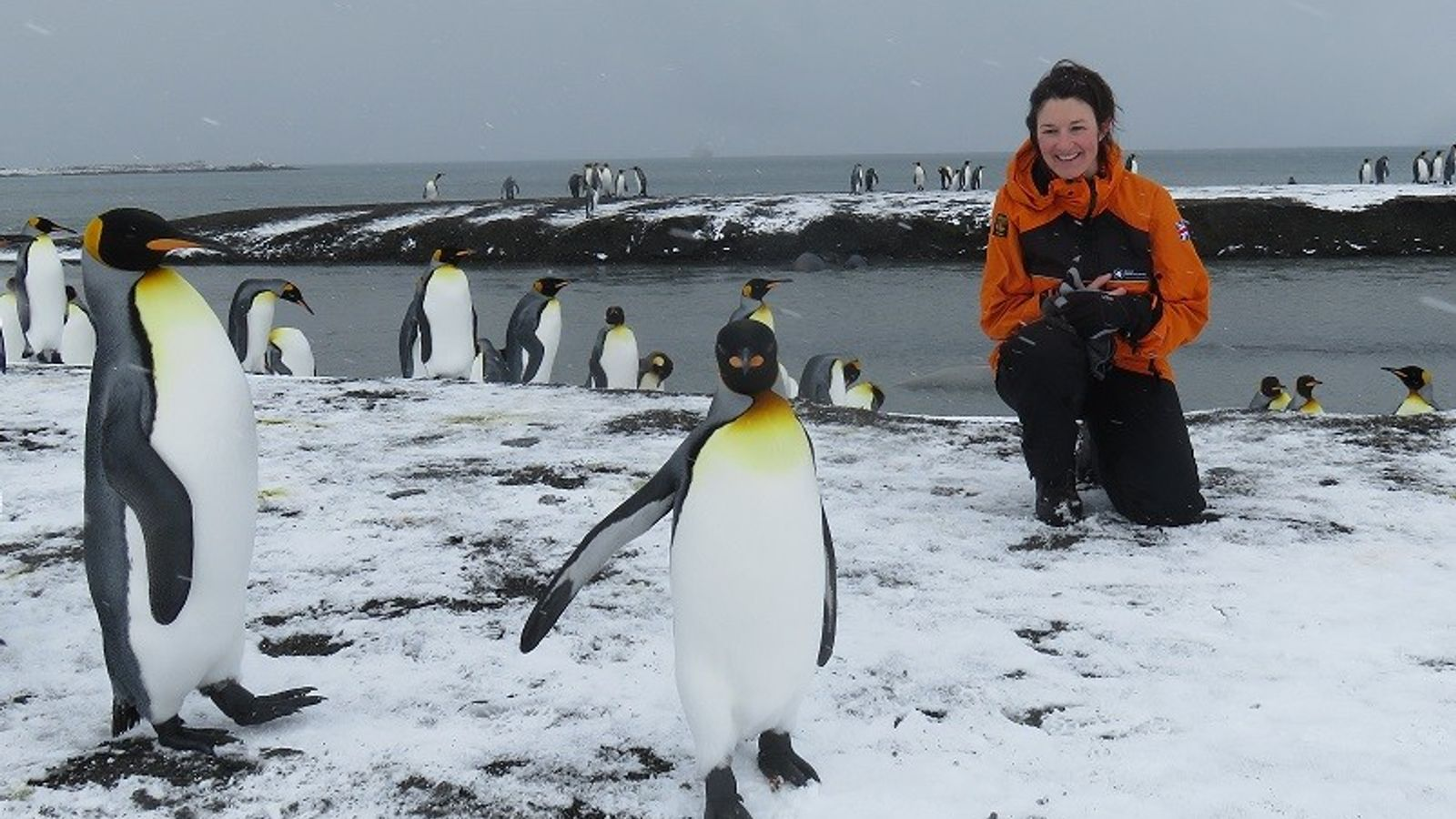 National Geographic Explorer Liz Thomas of the British Antarctic Survey is hosting this special Explorer Live ...