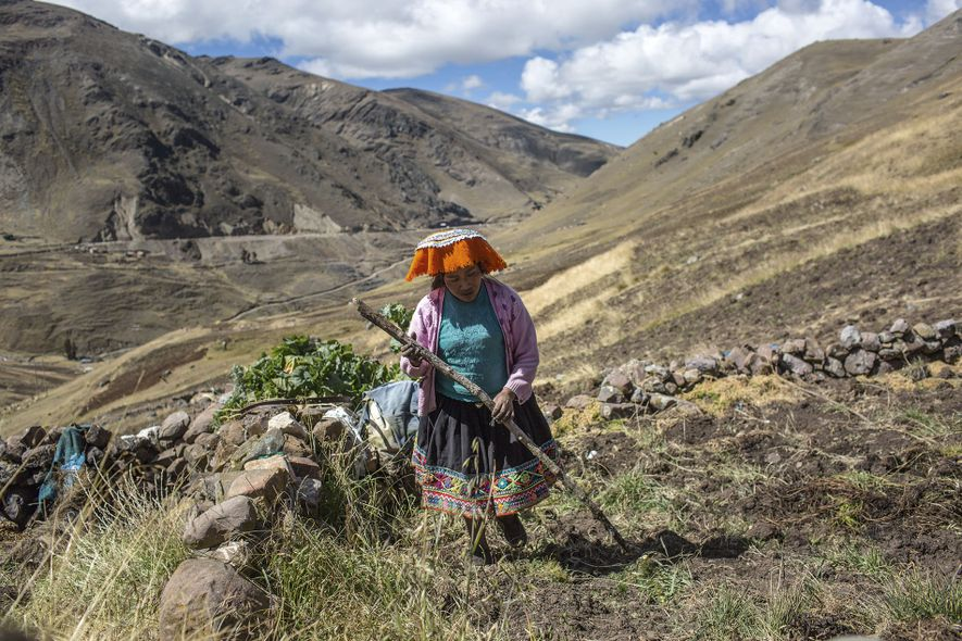 Person carries wood through the Sacred Valley