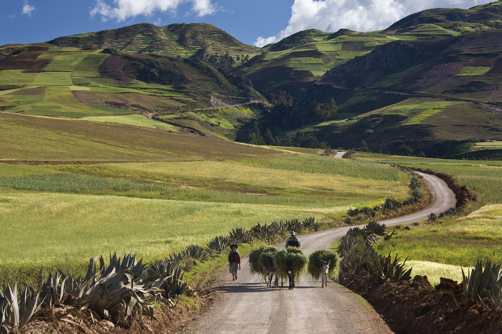 Done the Inca Trail? Try Peru's Lares trek