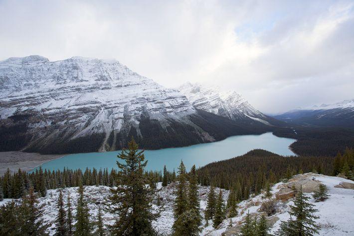 Mountains rise behind Peyto Lake in Banff National Park.
