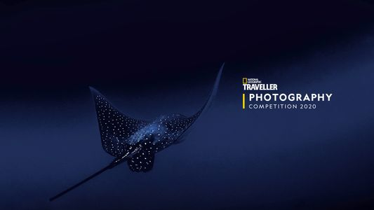 Photography Competition 2020: the shortlist is revealed