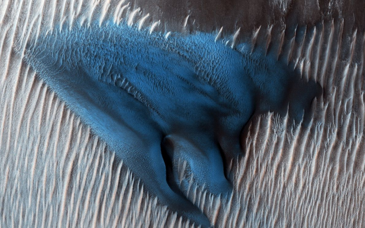 Sand accumulates into dunes on the floor of Mars's Lyot Crater in a picture taken by ...