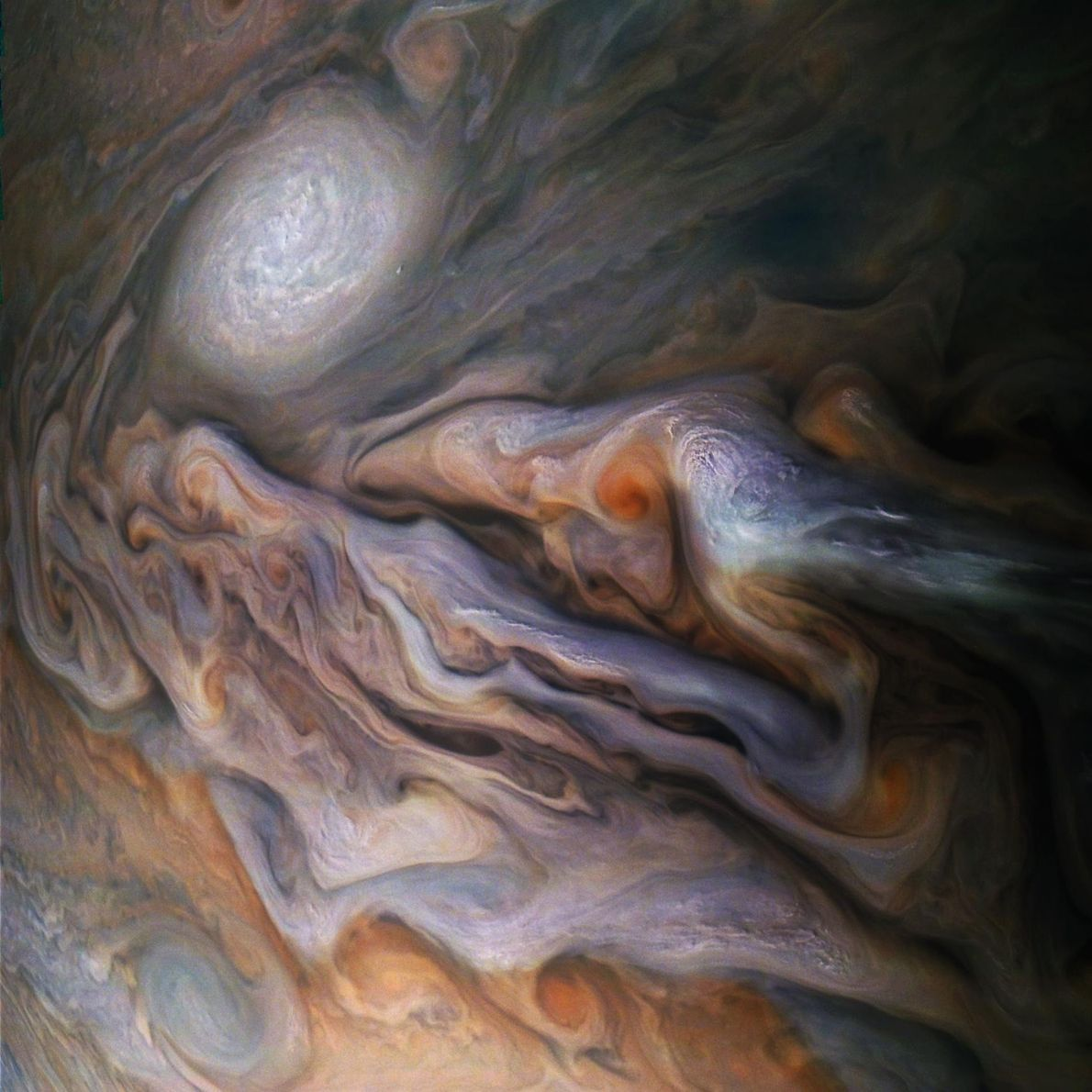 Magnificent clouds swirl like ink in Jupiter's North-North Temperate Belt, seen here by NASA's Juno spacecraft. ...