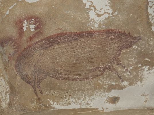 This 45,500-year-old pig painting is the world's oldest animal art