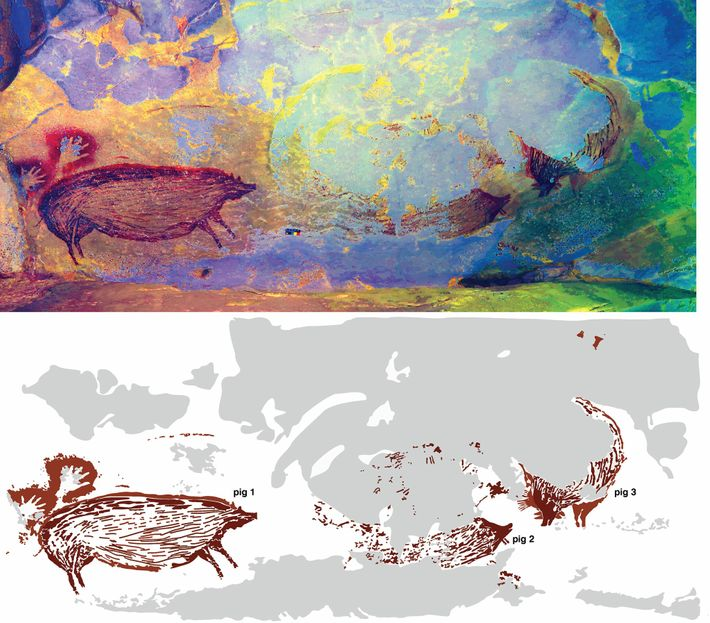 The cave art may depict a scene with multiple pigs interacting. But erosion has swept away ...