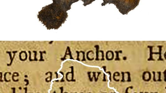 Chance Blackbeard Discovery Reveals Pirate Reading Habits