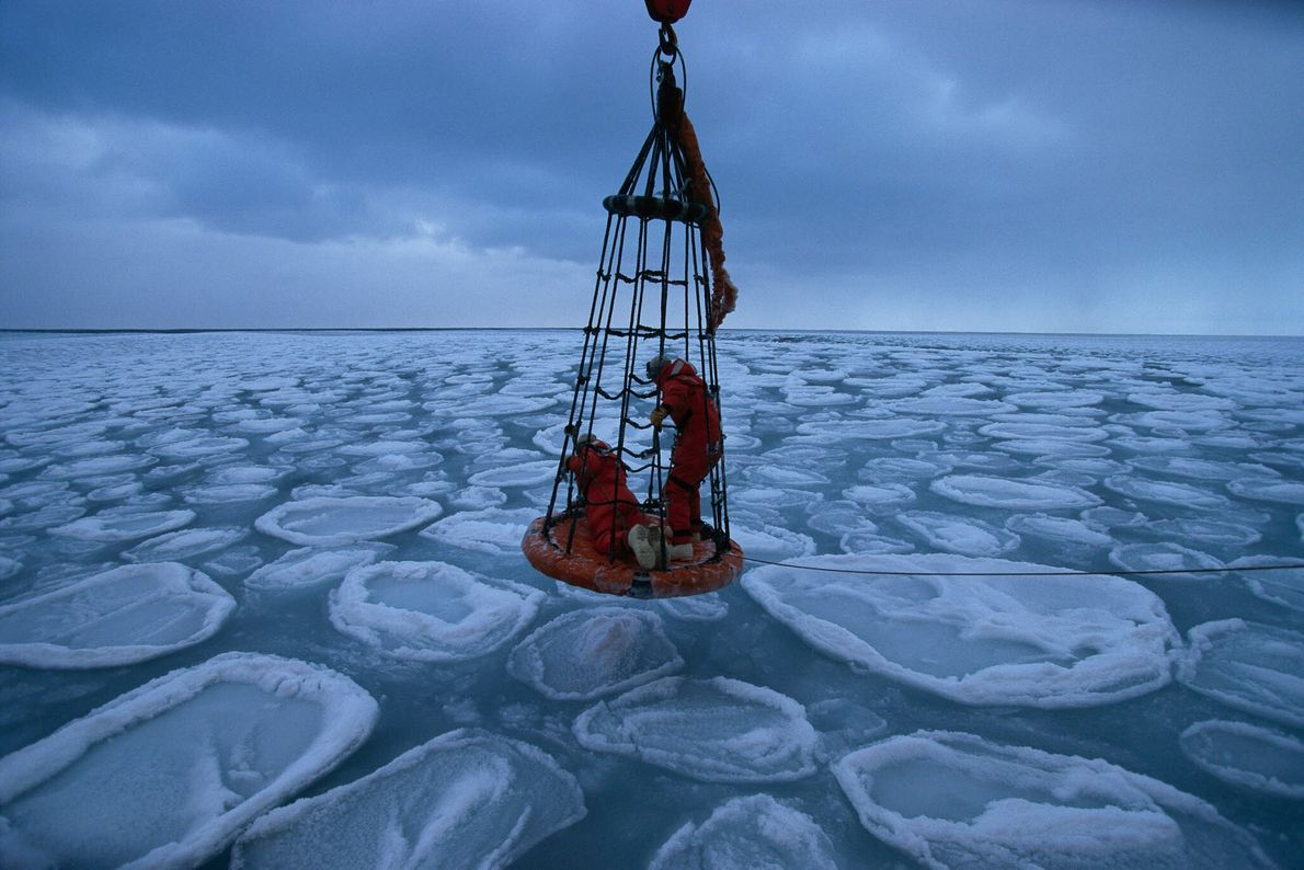 Ice Science