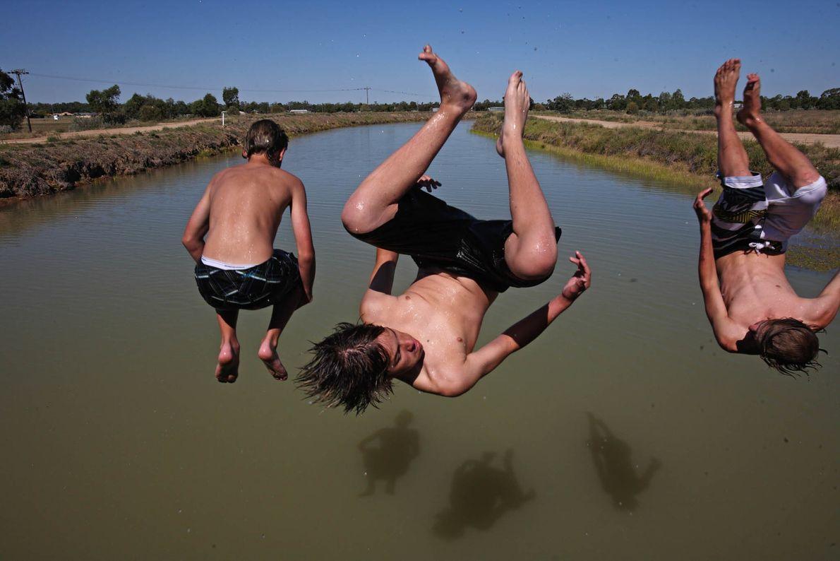 Summer Somersaults