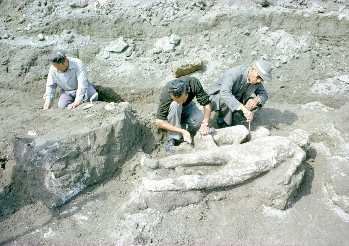 In Pompeii, Italy, archaeologists patch a plaster mould of a female victim of the eruption of ...