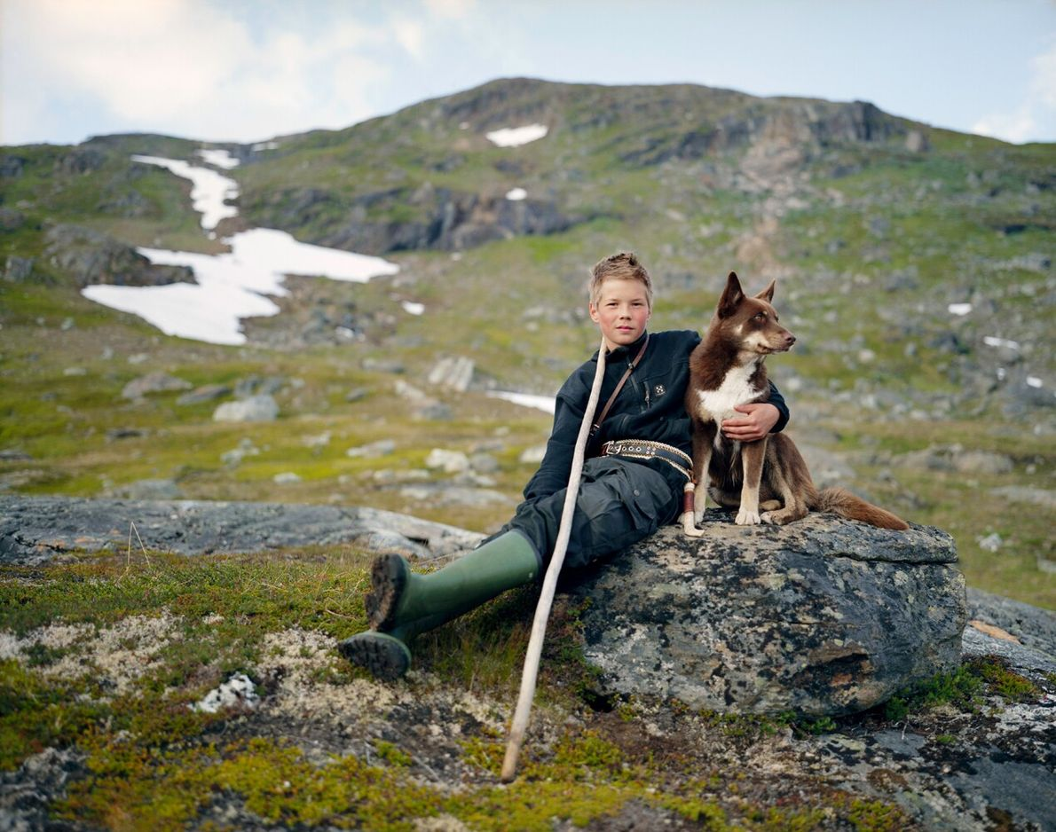 A Sami boy and his dog rest while herding reindeer in Norway during the summer. The ...