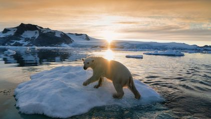 Incredible Images of Greenland