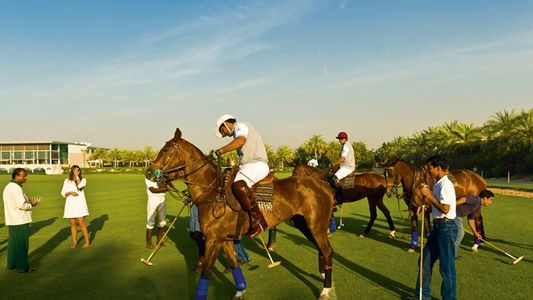 Dubai: At a canter