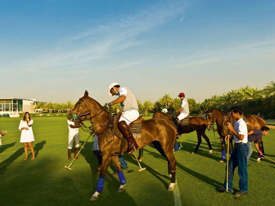 Dubai: At a canter