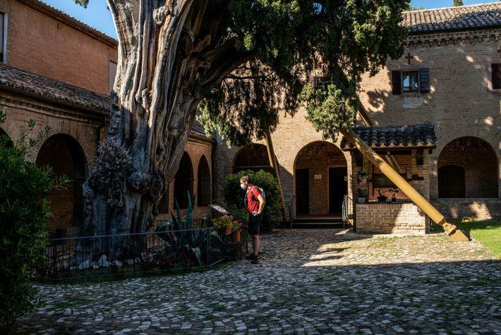 cypress-franciscan-convent
