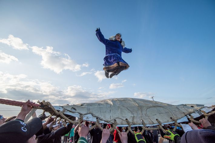 At Nalukataq, the Inupiat whaling festival in Utqiaġvik, people celebrate a productive whaling season and give ...