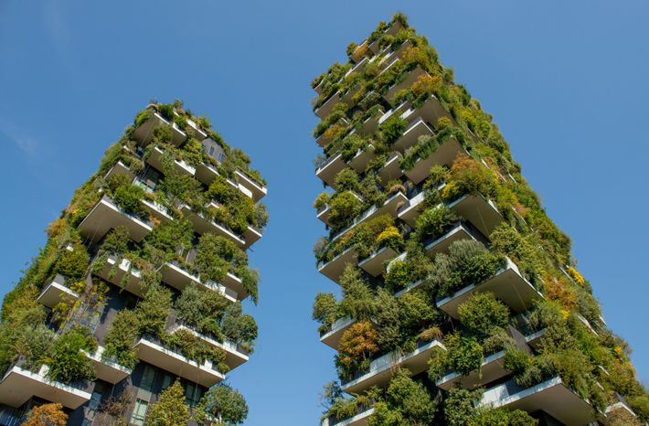 The Bosco Verticale (vertical forest) in Milan. The skyscrapers were conceived as a way of enriching ...