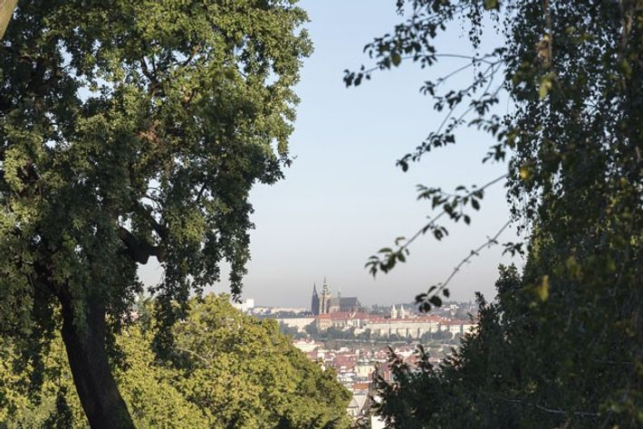 View of Prague Castle and the Old Town from Riegrovy Sady, in the Vinohrady district. Image: ...