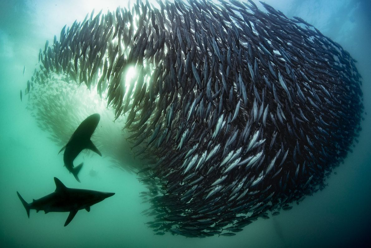 Port Saint Johns, South Africa