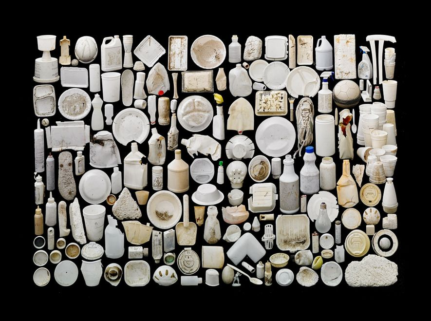 These objects have little in common beyond their shades of white—and their slow degradation by ocean ...
