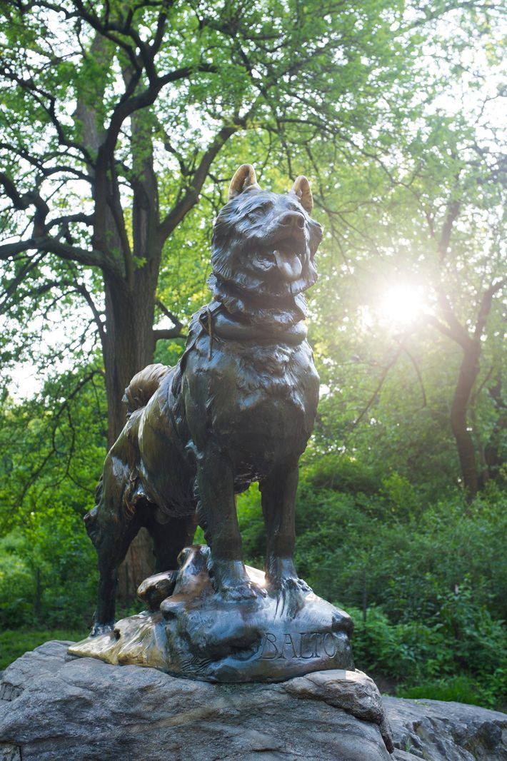 The statue of Balto in New York's Central Park. While the plaque dedicates the installation to ...