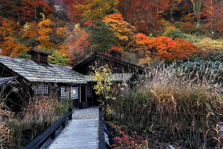 Nyuto Onsen is one of the most atmospheric hot springs in Japan, with a cluster of creaking ryokan ...