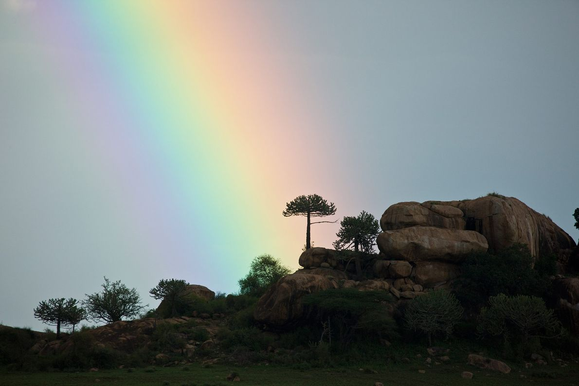 Chyulu Hills National Park, Kenya