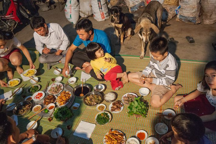 A family eats rats for dinner in Co Dung. Many rats are caught and consumed on ...