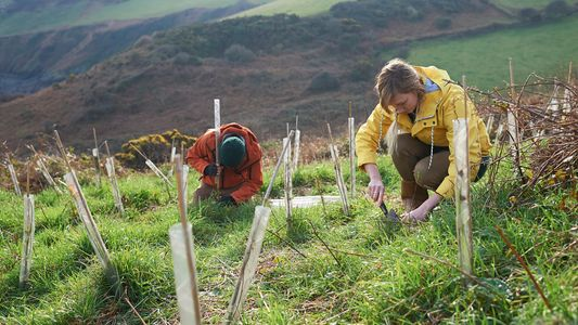 How people-powered conservation is helping to revive the UK's national parks