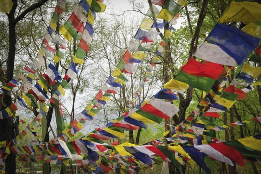 Buddhist prayer flags fluttering above the Tibetan settlement of Jampaling. Image: Emma Thomson