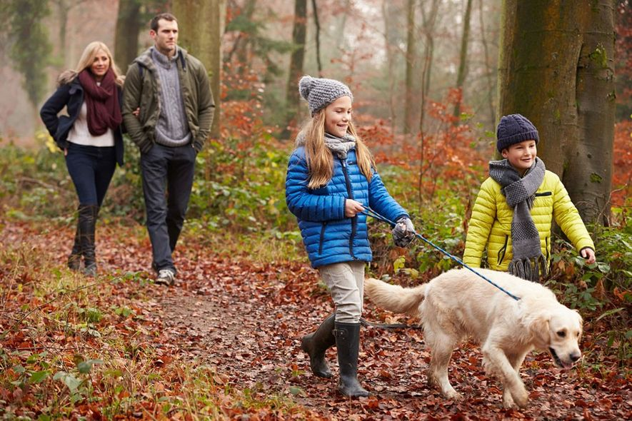 Resolve to go on special family outings instead of buying yet another plastic toy.