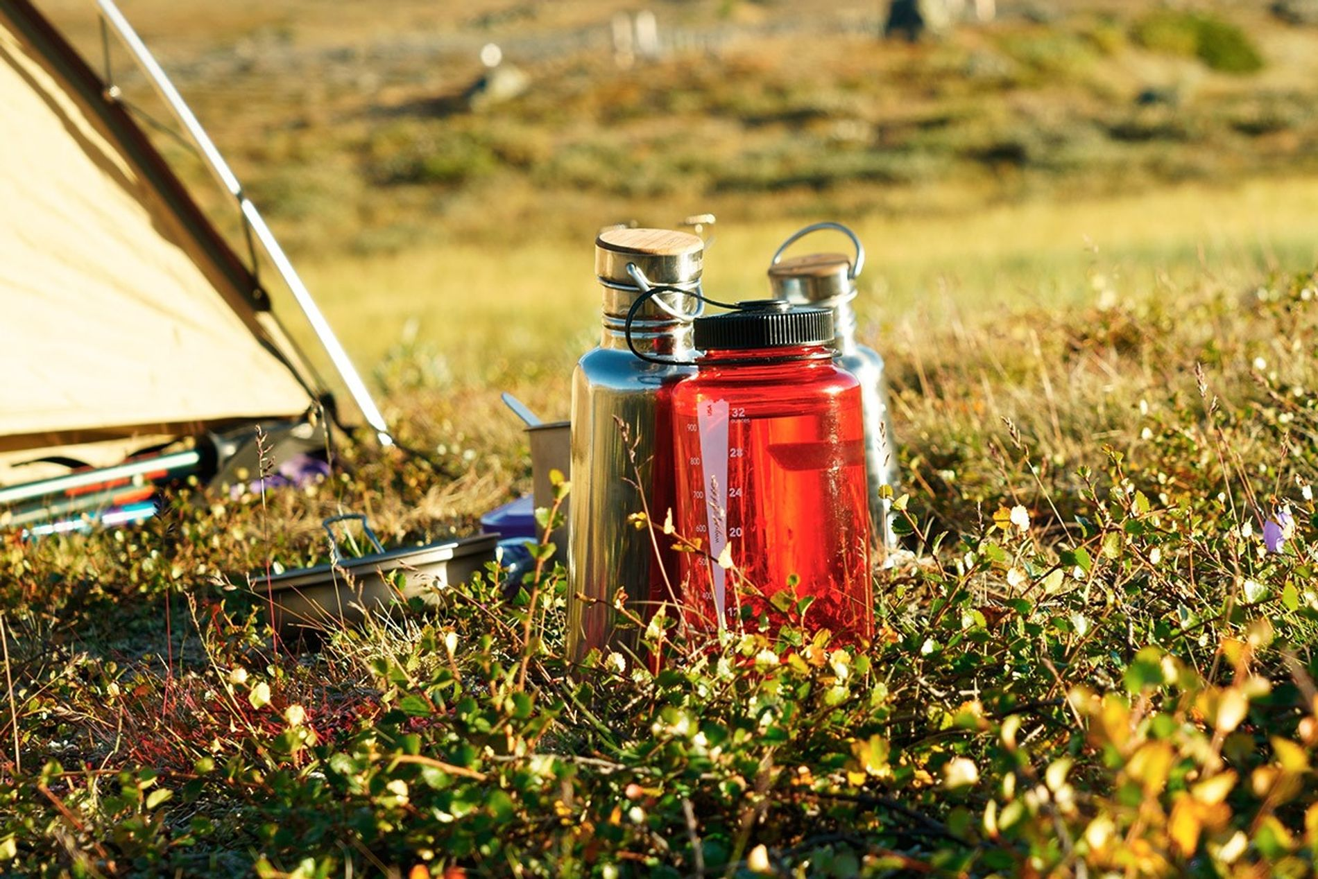 Reusable water bottles are a traveler's best friend. But how do you find potable water to ...