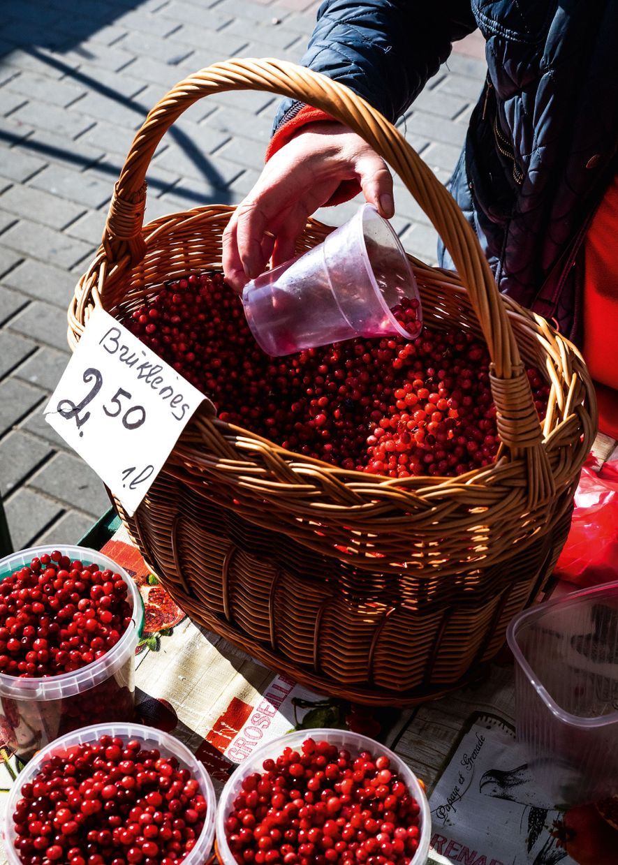 lingonberries from the forest being divided and weighed at the Riga Central Market.