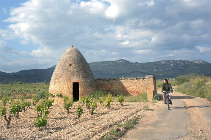 Cycling past Guardaviñas and vines.