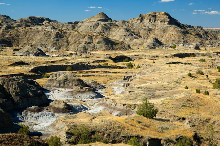 Montana badlands such as this, with heavily eroding, arid sedimentary deposits dating from the Cretaceous, are perfect prospects ...