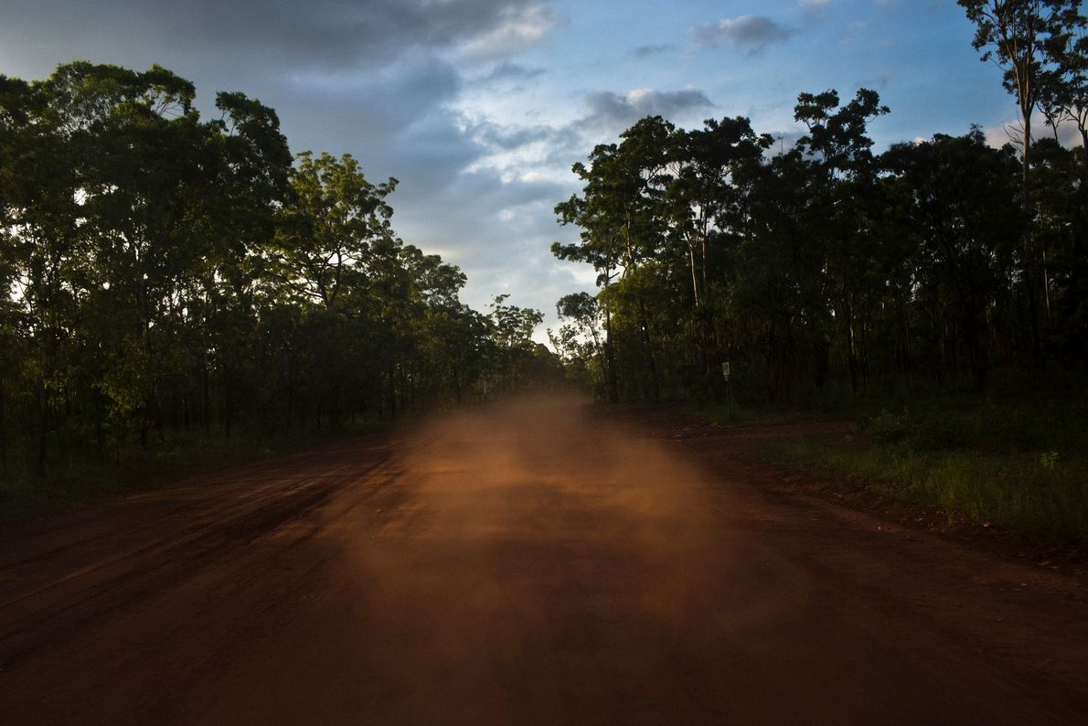 A cloud of red dust lingers behind a travelling vehicle at dusk on Melville Island.