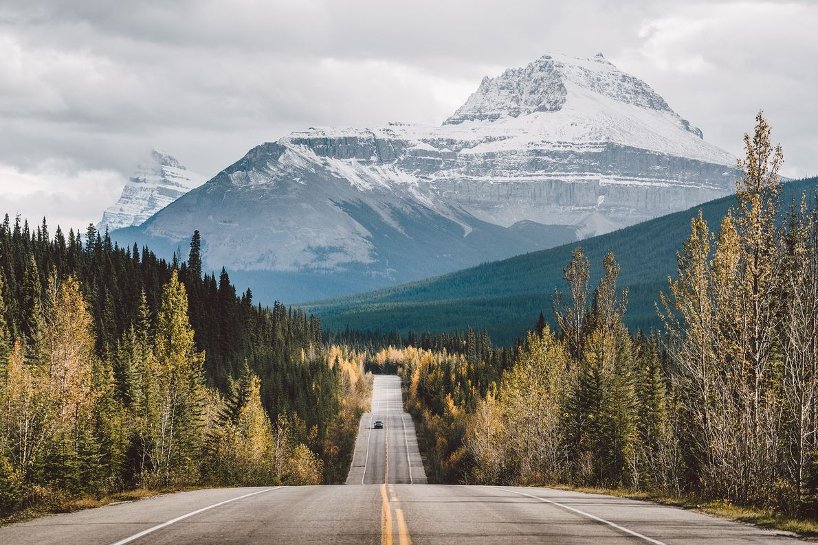 The Icefields Parkway links Lake Louise with Jasper National Park.