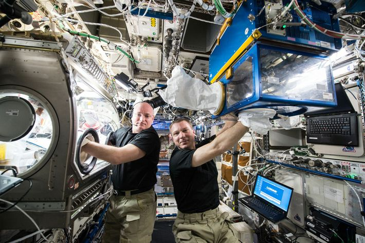 NASA astronauts Terry Virts (right) and Scott Kelly perform experiments for Rodent Research-2, a commercial investigation ...