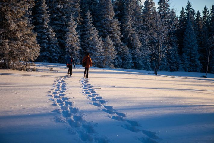 Making tracks. Nat Geo photographer, Ciril Jazbec and his guide Nejc He. Rogla's snowshoeing trails.