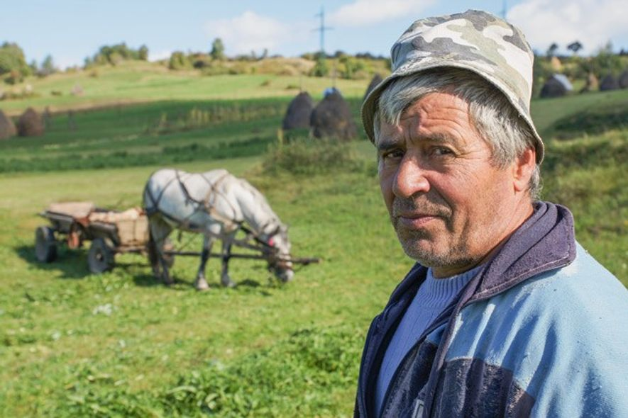 Farmer on a hillside just outside of Breb, Romania. Image: Henry Wismayer